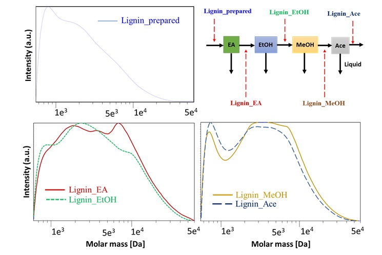 Figure 5  GPC curves of the prepared lignin and solid fractions after fractionating using the sequential industrial organic solvents of ethyl acetate, ethanol, methanol and acetone.