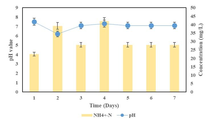 Figure 4  -N concentration observation alone