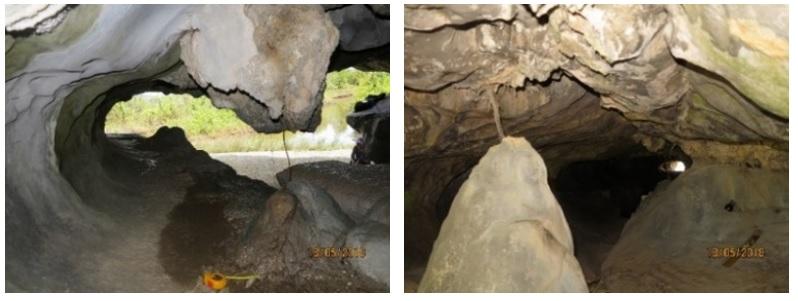 Figure 4  Măng đá và nhũ đá tại hõm gặm mòn trong Hang Cá Sấu