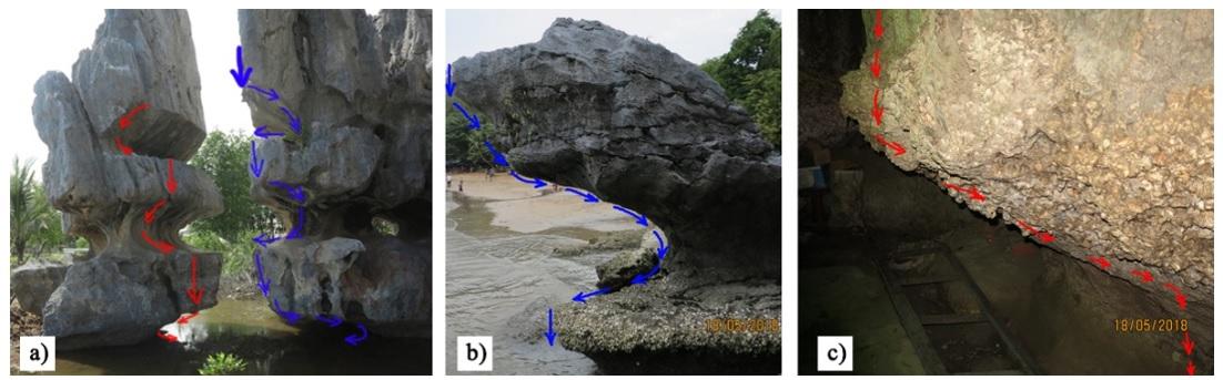 Figure 13  Các hõm gặm mòn vẫn giữ được nguyên vẹn hình dạng. Vị trí: (a): Hang Cá Sấu, (b): ven biển Chùa Hang, (c): trong hang chùa Hải Sơn)
