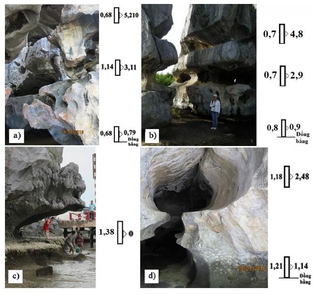 Figure 9  Kết quả đo đạc (đơn vị: m) hõm gặm mòn tại Hang Cá Sấu (a, b), Chùa Hang (c) và hang Moso(c).