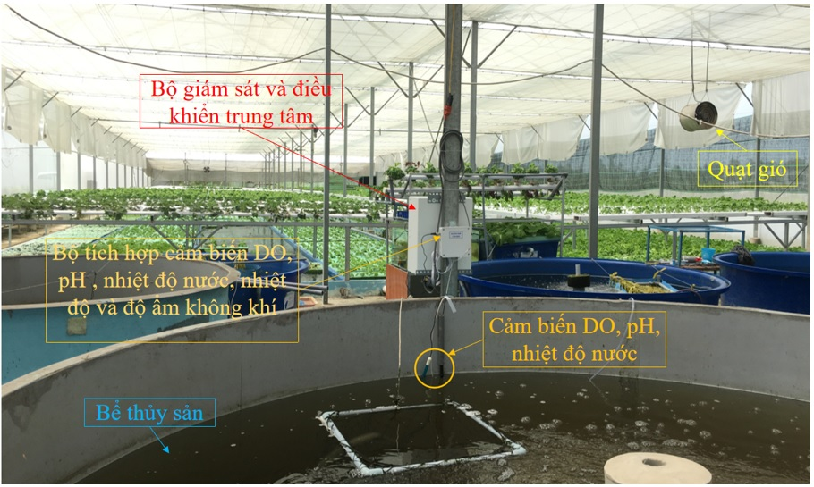Figure 14  Lắp đặt hệ thống giám sát và điều khiển trong mô hình aquaponics