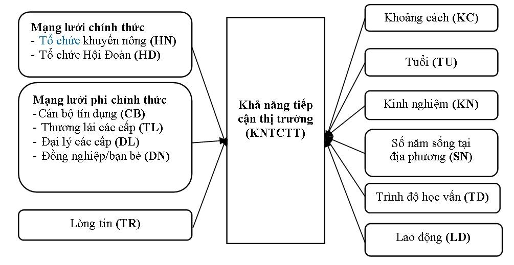 Figure 1  Tác động của vốn xã hội đến khả năng tiếp cận thị trường của hộ trồng cà phê