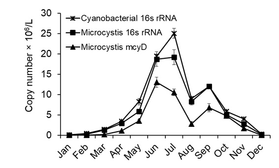 Figure 5   as determined by qRT-PCR.