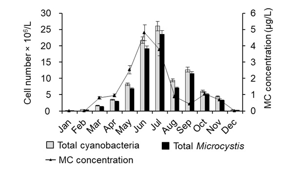 Figure 2   and MC concentration