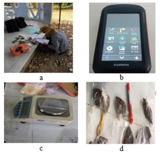 Figure 3  a) Ghi nhận khối lượng của mẫu ngoài thực địa; b) Máy GPS cầm tay GPS Garmin Motana 680; c) Cân khối lượng bì nhựa; d) Mẫu được ký hiệu sau khi cân khối lượng.