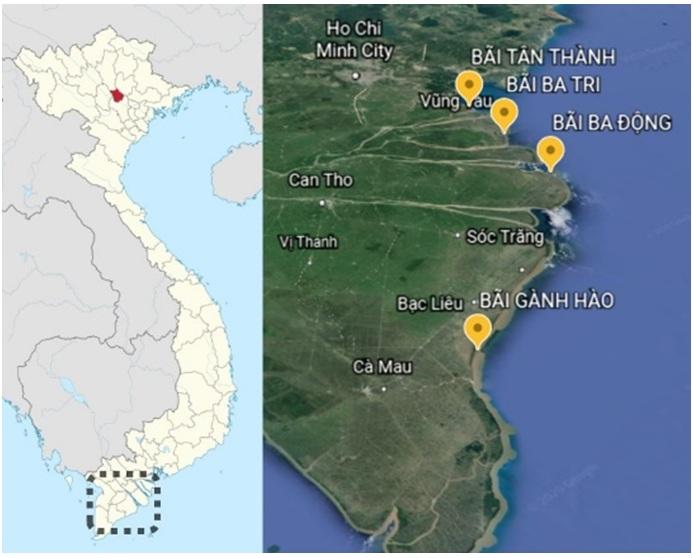 Figure 1  Vị trí thu mẫu tại 4 bãi nuôi nghêu thuộc ĐBSCL (Google Earth, cập nhật 30/11/2020)