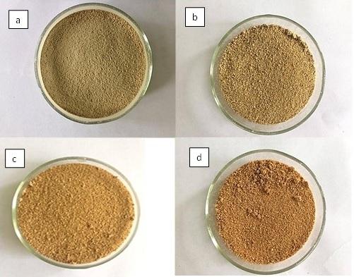 Figure 2  Sự thay đổi màu sắc mẫu qua từng giai đoạn xử lý (a) mẫu thô,(b) mẫu tiền xử lý, (c) mẫu xử lý axit và (d) mẫu xử lý PFA