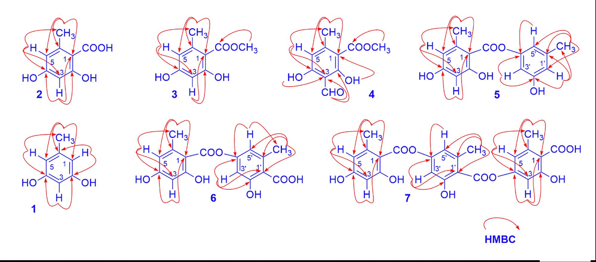 Figure 1  Key HMBC of isolated compounds