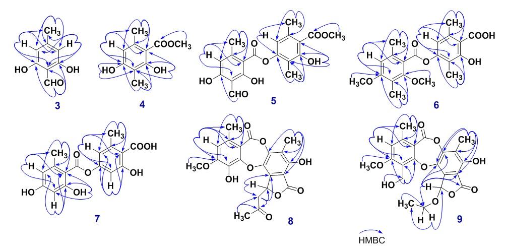 Figure 2  Keys HMBC of isolated compounds