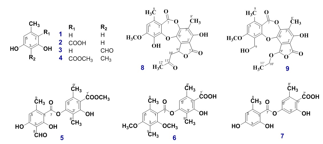 Figure 1  Structures of all isolated compounds