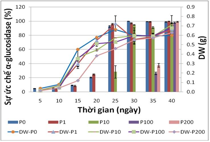 Figure 1  Đồ thị thể hiện sự ảnh hưởng của nồng độ phenylalanine đến khối lượng khô (DW) và hoạt tính ức chế α-glucosidase của rễ tơ Ké hoa đào. P0, P1, P10, P100, P200 là phenylalanine ở các nồng độ 0, 1, 10, 100, 200 µM