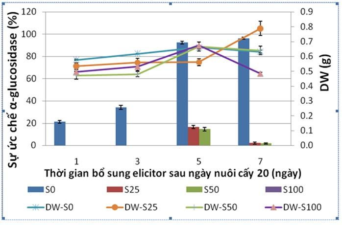 Figure 7  Đồ thị thể hiện sự ảnh hưởng của nồng độ acid salicylic đến khối lượng khô (DW) và hoạt tính ức chế α-glucosidase của rễ tơ Ké hoa đào. S0, S25, S50, S100 là acid salicylic ở các nồng độ 0, 25, 50, 100 µM