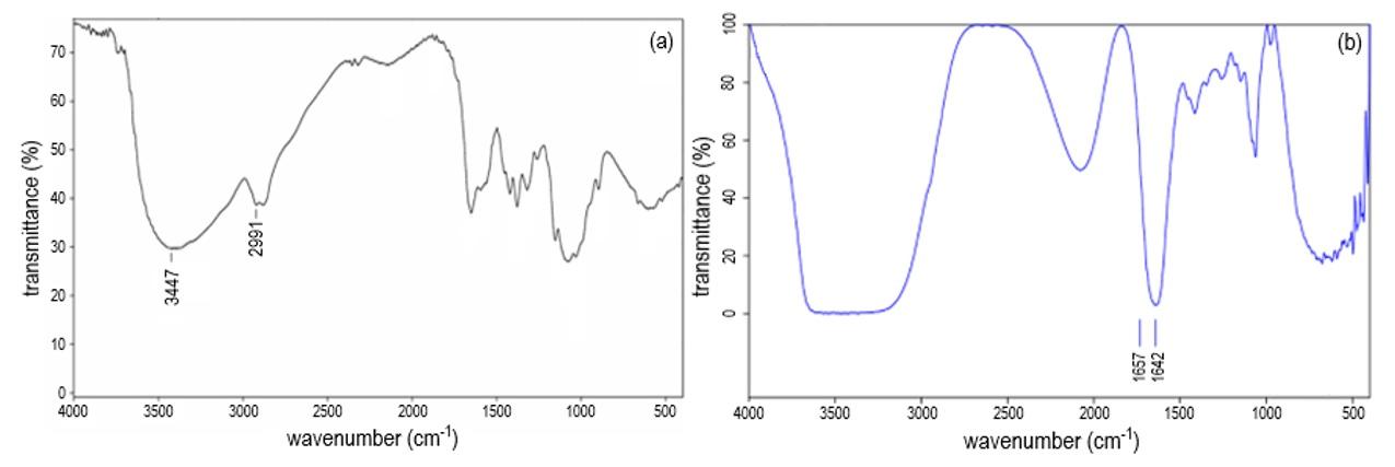 Figure 5  Phổ FT-IR của (a) chitosan tinh khiết và (b) mẫu nano vàng dạng sao được tổng hợp với chitosan tại pH 4