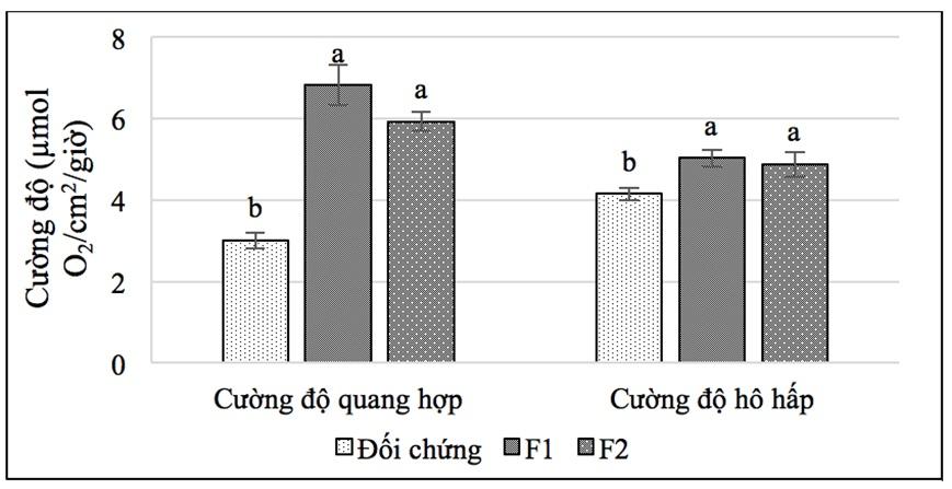 Figure 6  <i> Trong cùng một chỉ tiêu, các mẫu tự khác nhau khác biệt ở mức p ≤ 0,05.</i>