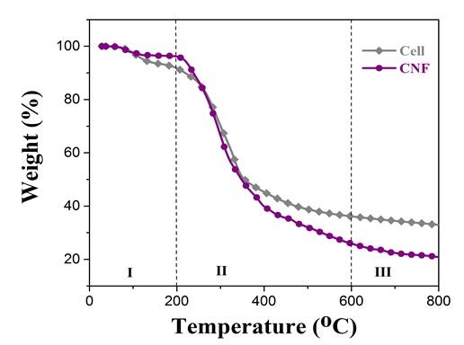 Figure 6  Giản đồ TGA của mẫu sợi chưa xử lý (Cell), CNF