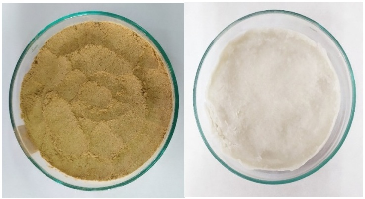 Figure 1  Bột sợi dừa nước trước (bên trái) và sau khi được tẩy trắng hai lần (bên phải)