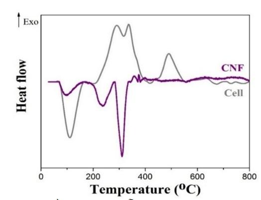 Figure 7  Giản đồ DSC của mẫu sợi chưa xử lý (Cell) và CNF