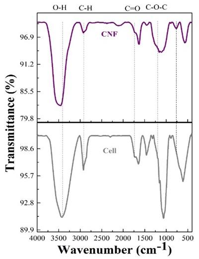 Figure 2  Phổ FT–IR của mẫu sợi chưa xử lý (Cell) và mẫu sợi tẩy trắng (CNF)