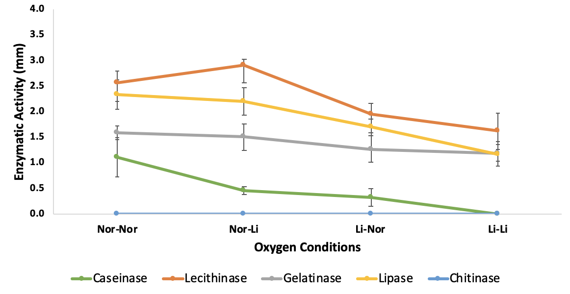 Figure 3   under different oxygen conditions: shaking overnight culture followed by plate testing without AnaeroPack® (Nor-Nor), shaking overnight culture followed by plate testing with AnaeroPack® (Nor-Li), static overnight culture with Oxygen absorber package followed by plate testing without AnaeroPack® (Li-Nor), static overnight culture with Oxygen absorber package followed by plate testing without AnaeroPack® (Li-Li). No activity of chitinase was observed in any tested culturing temperature.