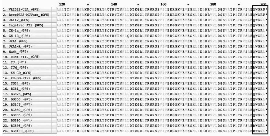 Figure 4  So sánh trình tự amino acid của GP5 ở các chủng PRRSV nghiên cứu và một số chủng PRRSV trên thế giới