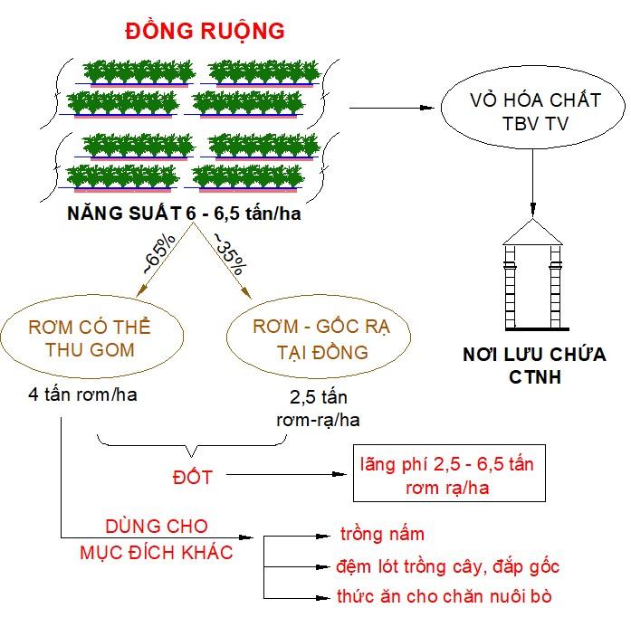 Figure 2  Hiện trạng xử lý chất thải đồng ruộng tại các hộ xã Định Thành