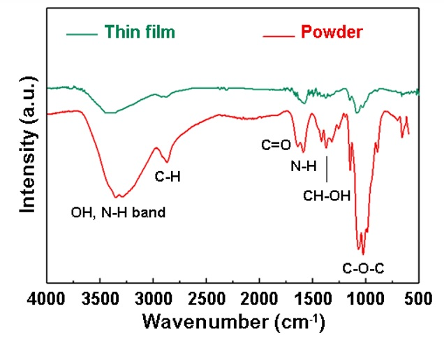 Figure 3   The 100 nm-thick chitosan film was coated onto a silicon substrate.