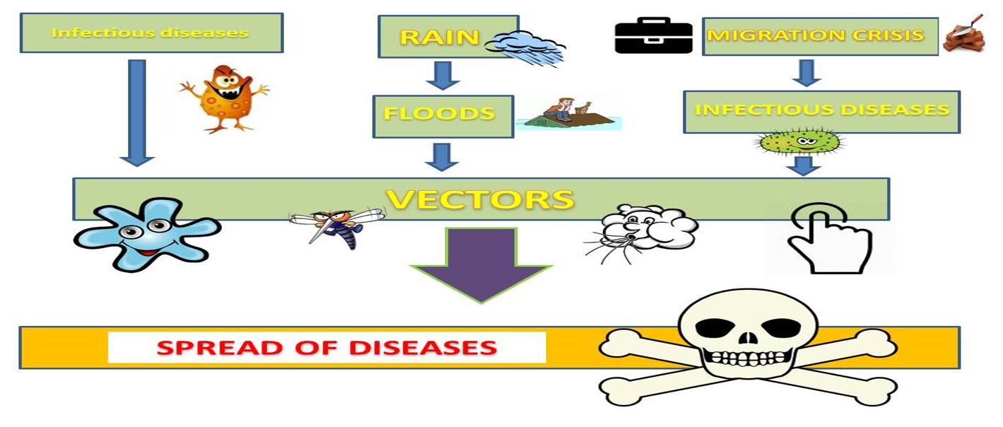 Figure 2  A brief representation of the effects of the various factors on the population health in Kerala.