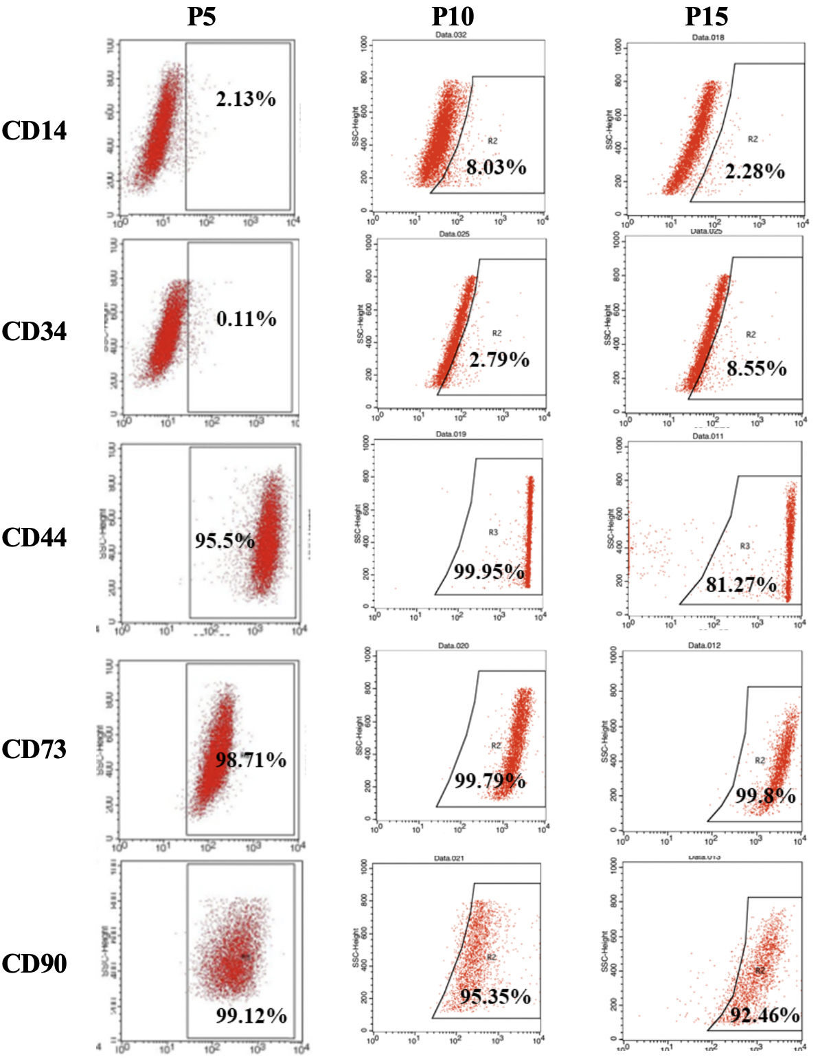 Figure 2  . The hBMSCs at the three passages showed a high expression of CD44, CD73, and CD90. On the other hand, CD14 and CD34 were expressed in all passages by about 10% of the hBMSCs.