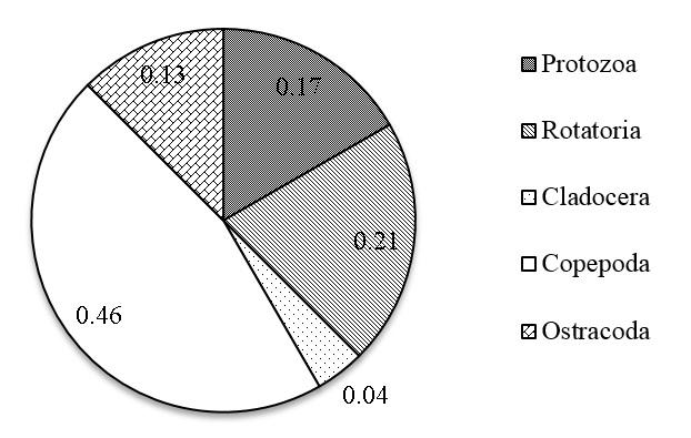 Figure 2  Tỷ lệ các nhóm phiêu sinh động vật trong các ao nuôi tôm