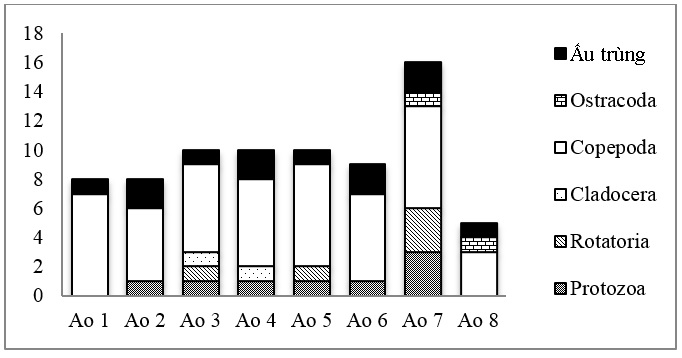 Figure 3  Số lượng loài từng nhóm phiêu sinh động vật trong tháng 4